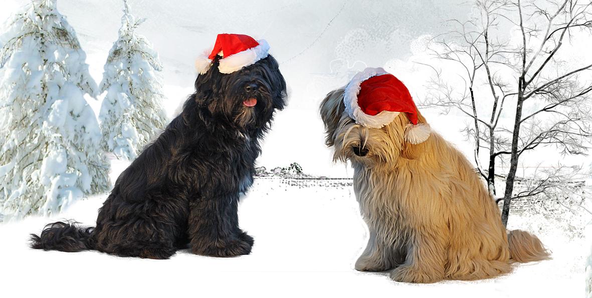 Weihnachten fb